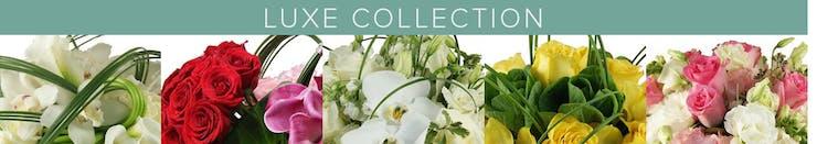 Miami Luxury Flowers