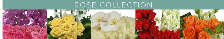 Miami Luxury Roses