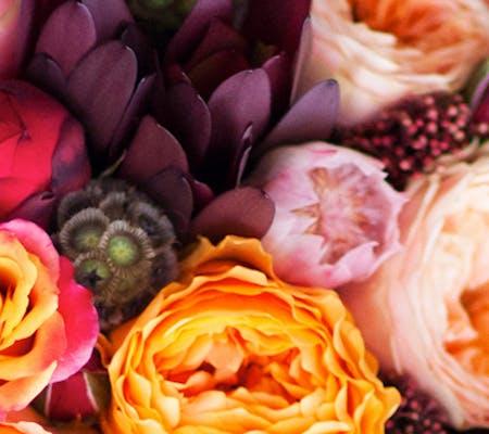 Trias flowers flower delivery miami florida florist celebrate fall color mightylinksfo