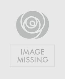 Red roses and green cymbidium orchids.