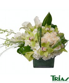 White, Green and Ivory flowers make an elegant statement.