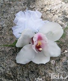 White Cymbidium Orchid Corsage