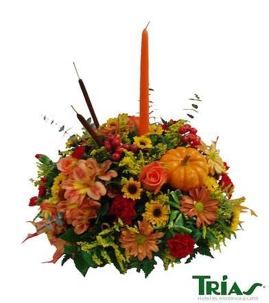 Autumn's 1st Bloom Trias Flowers Miami Fl