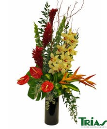 Exotic Bouquet with Cymbidium Orchids