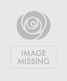 Gerbera daisies, roses, snapdragon, blue hydrangea, delphinium, solidago, wax flowers and Italian ruscus in a square glass vase.