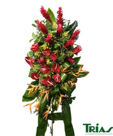 Beautiful tropical flowers for your loved one.