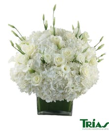 Elegant bouquet of white flowers!