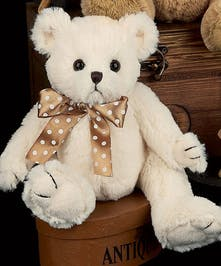 Coconut colored bearington bear