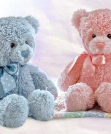 Teddy Bear Gift for New Baby Gifts