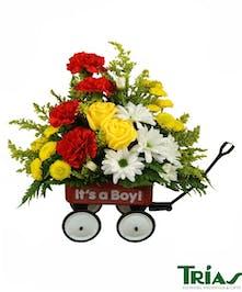 New Baby Boy Flower Wagon Arrangement