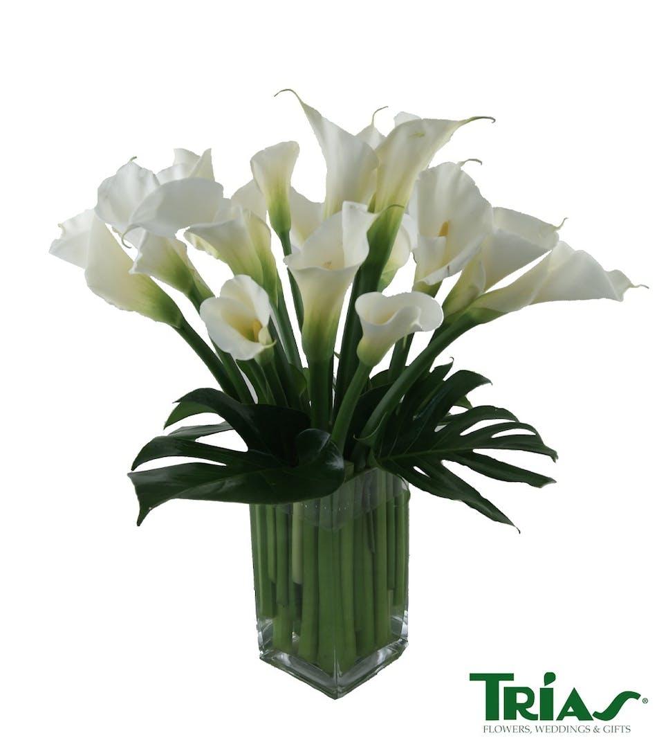 Calla Lilies Floral Bouquet Delivery Trias Flowers Miami Fl