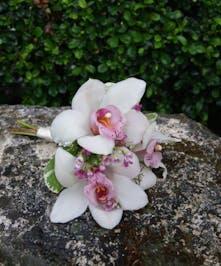 Junior Bqt White Cymbidium Orchids