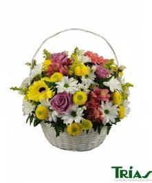 An adorable spring arrangement!