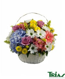 White Basket Spring Flowers Colorful