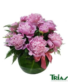 Fresh pink peonies in a glass fishbowl vase