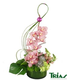 PInk orchids and snapdragons, with green hydrangeas and succulents