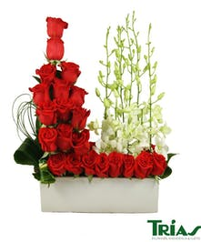 Bouquet of red roses and white orchids