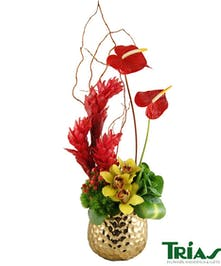 Modern Gold Vase with an exotic combination