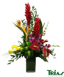 Flower bouquet with red ginger, red anthurium, purple dendrobium orchids, yellow calla lilies, fire opal psittacorum