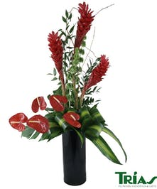 Tropical design with red gingers and anthuriums