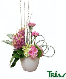Modern design with mokara orchids and green cymbidiums orchids