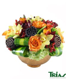 Lime green hydrangeas, circus roses, mango mini callas, red hypericum berries, yellow orchids and masangena leaves.
