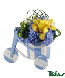 Blue tricycle with arrangement of roses, orchids and hydrangeas