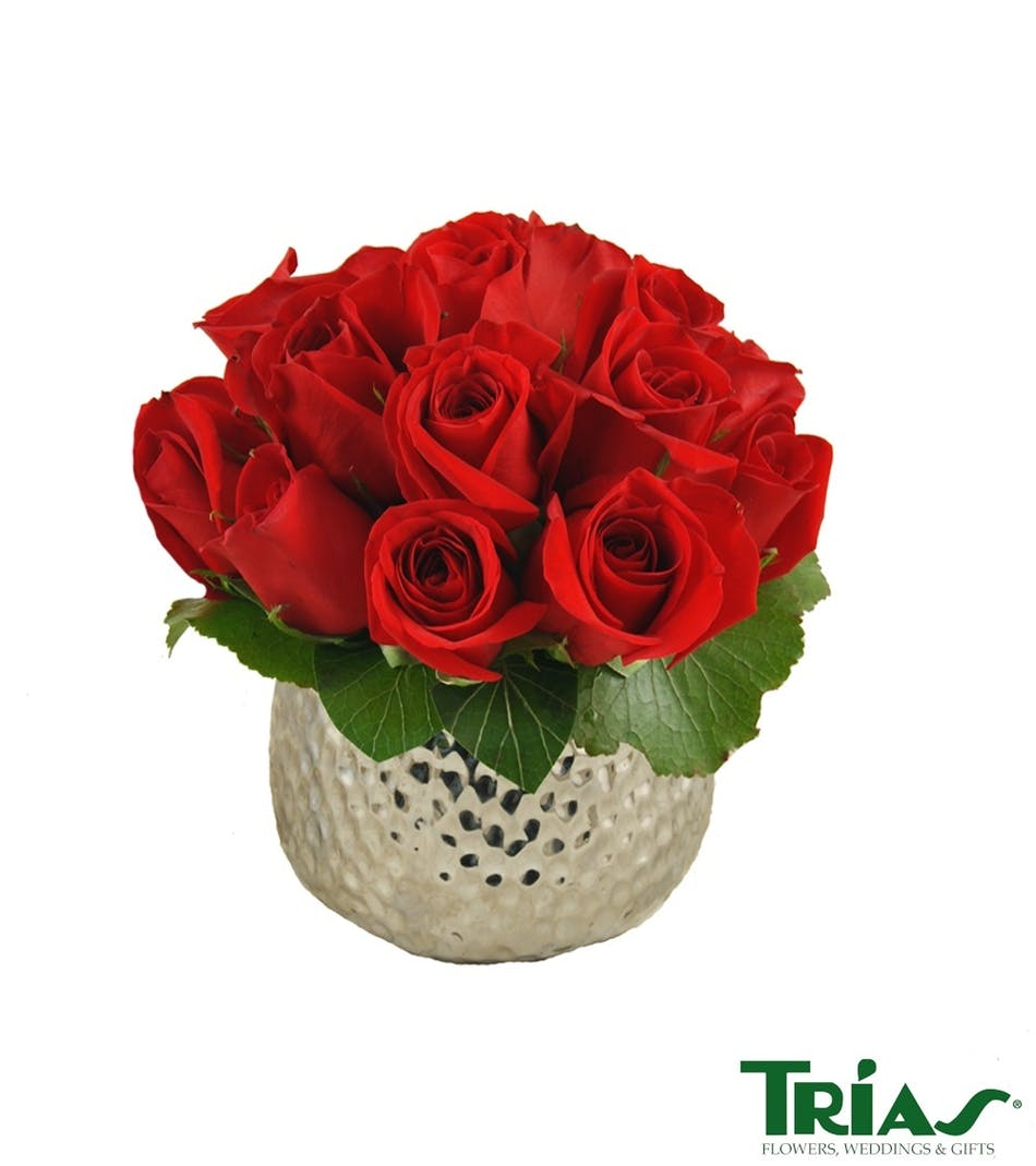 Miami fl red rose delivery trias flowers elegant roses in a beautiful silver vase izmirmasajfo