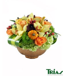 lime green hydrangeas, orange roses, red hypericum berries, safari sunset, yellow cymbidium orchids, green tricks