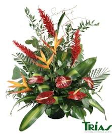Exotic funeral basket