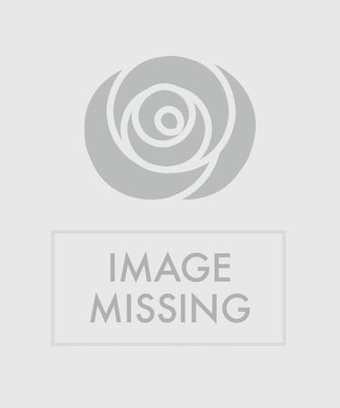 Spring Basket Butterfly Birthday Flowers