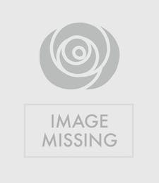 Funeral Cross - White Roses & White Orchids