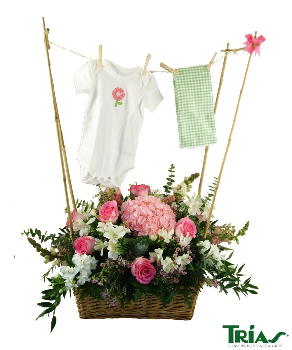 Baby girl clothes hanger new baby its a girl miami coral gables baby girl clothes hanger new baby its a girl miami coral gables hialeah mirimar izmirmasajfo