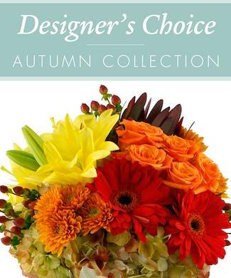 Designers Choice - Autumn Collection