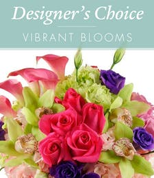 Designers Choice - Vibrant Blooms