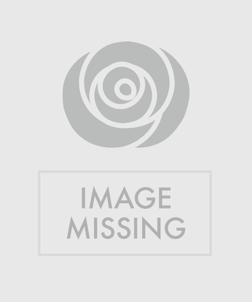 Tropical flowers blooming plants miami fl flower delivery izmirmasajfo