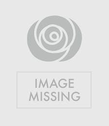 Chocolate & Cookies Basket