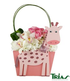 Baby Girl - Pink Giraffe Box