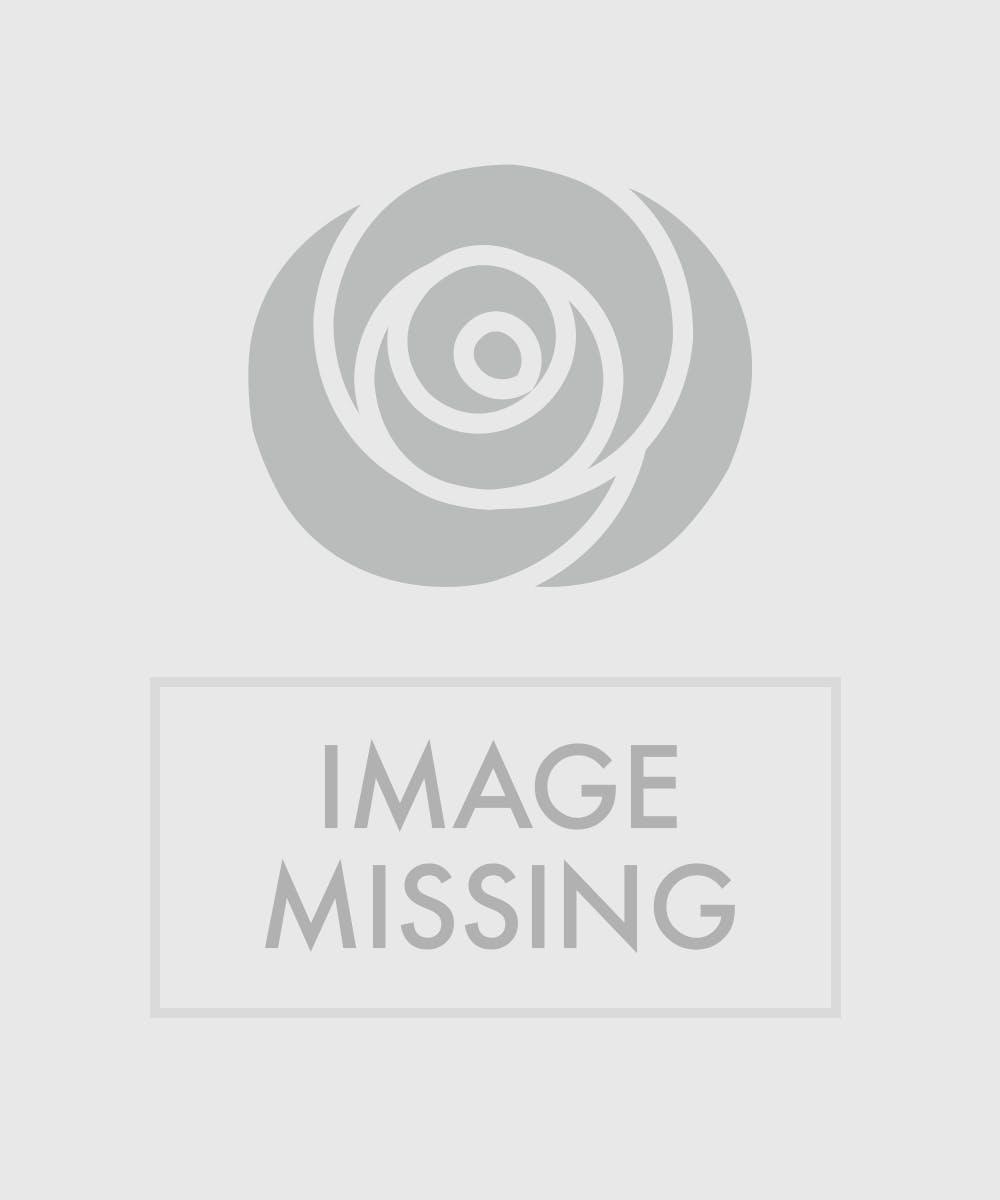 Funeral flowers sympathy sprays miami fl flower delivery izmirmasajfo